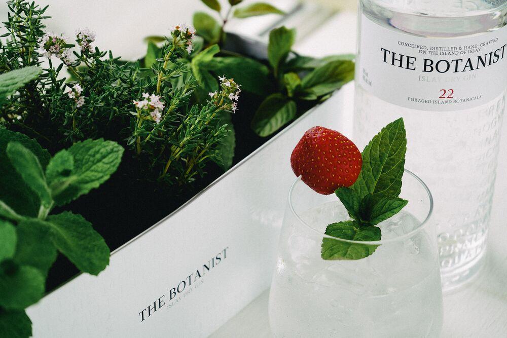 Botanist Gin Schuber Geschenkset - The Botanist Islay Dry Gin 0,7l (46% Vol) + 2x Longdrinkgläser + Blumentopf / Pflanzkübel aus Metall mit Logo- [Enthält Sulfite]