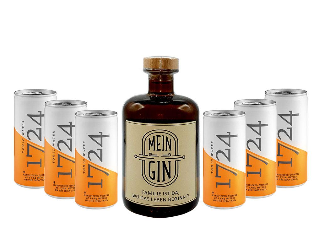 Mein Gin - Premium Dry Gin 0,5l (41% Vol) + 6x 1724 Tonic Water Dose 200ml inkl. Pfand EINWEG - [Enthält Sulfite]