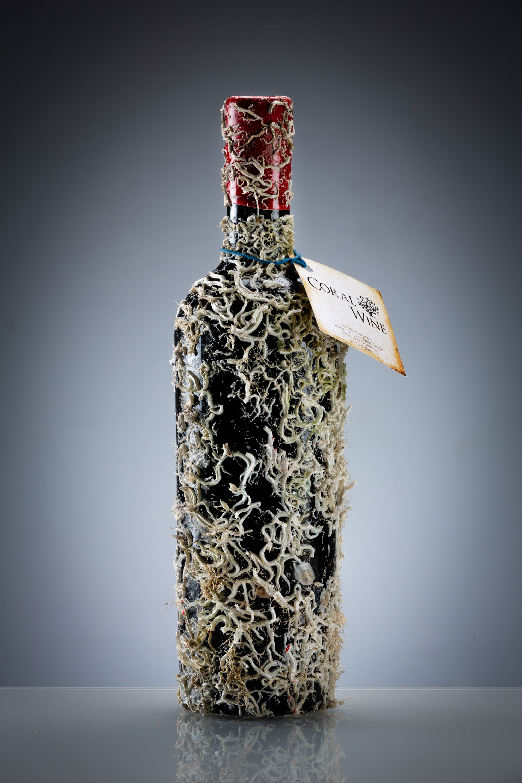 Coral Wine Deux Mers Jahrgang 2015 0,75l (14,5% Vol) - Rotwein mit echten Korallen- [Enthält Sulfite]